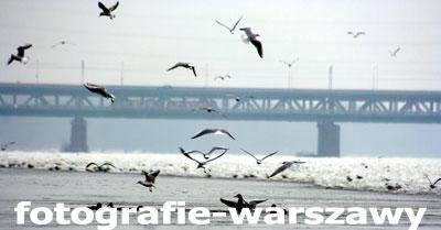 Fotografie-warszawy